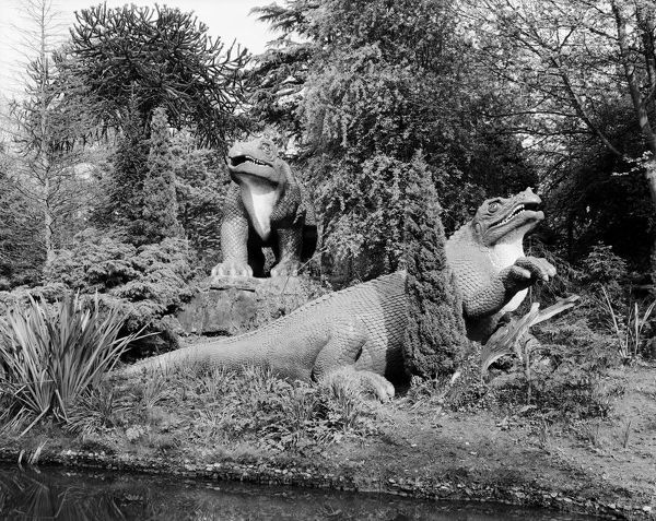 Prehistoric animal sculptures in Crystal Palace Park, Sydenham, London. Photographed by Paul Barkshire, 18th May 1983. The dinosaur sculptures were constructed by Benjamin Waterhouse Hawkins in the 1850s. They are Grade I listed structures