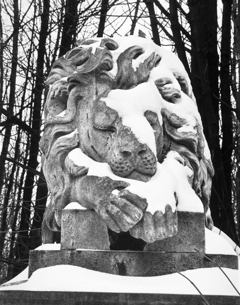 HIGHGATE CEMETERY, London. A snow covered, marble statue of a sleeping lion. The statue, lying on top of George Wombwell's tomb in Highgate Cemetery depicts Nero his pet lion. Photographed by John Gay in 1984