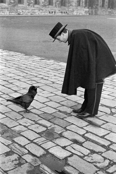 Tower Of London, Tower Hill, London. A Beefeater bends down to address a raven. Photographed by John Gay between 1935 and 1939