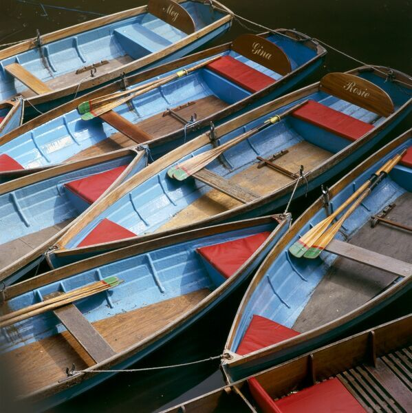 RIVER CHERWELL, Oxford, Oxfordshire. Rowing boats moored at Magdalen Bridge