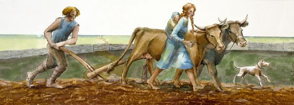 Reconstruction drawing of family ploughing during the Iron Age by Judith Dobie, English Heritage Graphics Team. Farming