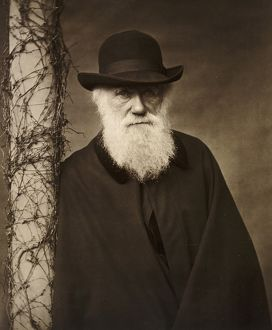 Charles Darwin and Down House (Selection of 164 Items)
