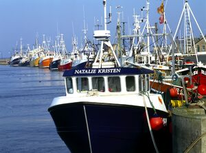 Fishing boats in Amble Harbour K011713