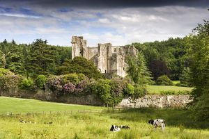 Old Wardour Castle N090397