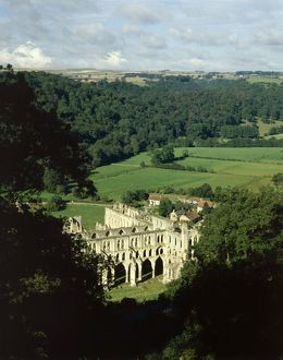 Rievaulx Abbey (Gallery of 47 Items)
