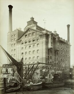 Robinsons Flour Mill, Deptford, London 1883 BL03876