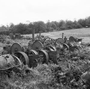 Steam engines, Norfolk AA98_07546