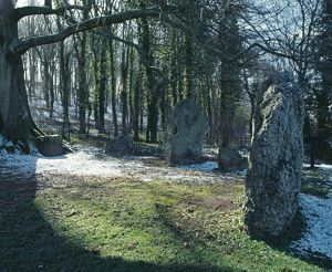 Nine Stones, Winterbourne Abbas K040041
