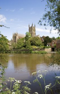 Worcester Cathedral N060747