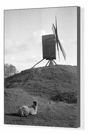 BRILL WINDMILL, Brill, Buckinghamshire. This post mill dates to 1668, making it one of the oldest in the country