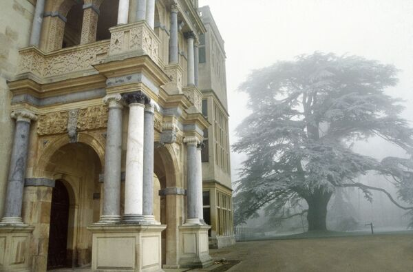 AUDLEY END HOUSE AND GARDENS, Essex. Winter view showing the Jacobean west front entrance and a frost covered Cedar tree