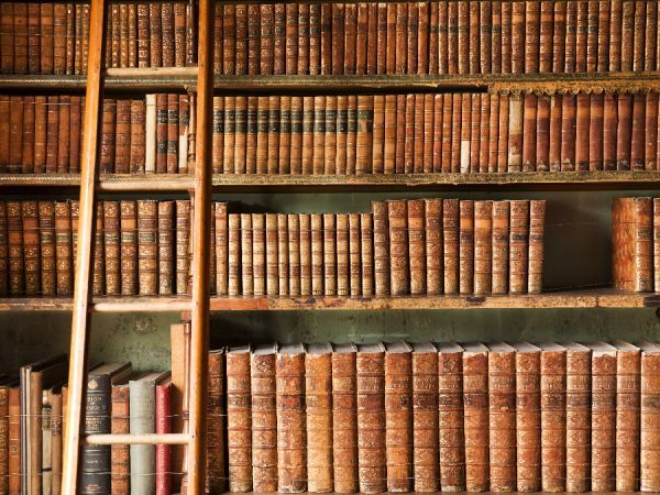 BRODSWORTH HALL, South Yorkshire. Interior view of the library. Detail of leather-bound books and ladder