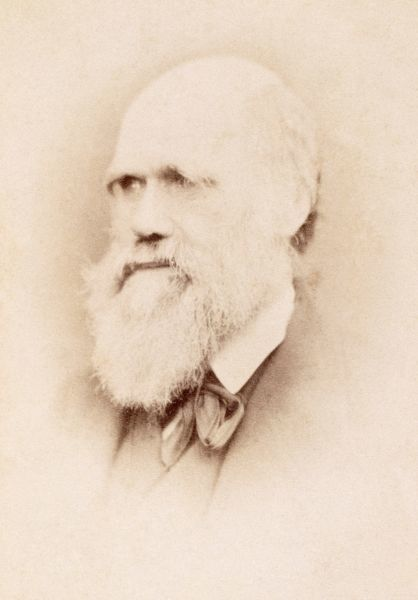 DOWN HOUSE, Downe, Kent. Albumen portrait photograph of Charles Darwin