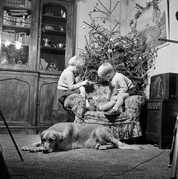 Christmas AA075706. Christmas time. A domestic interior with twins sitting
