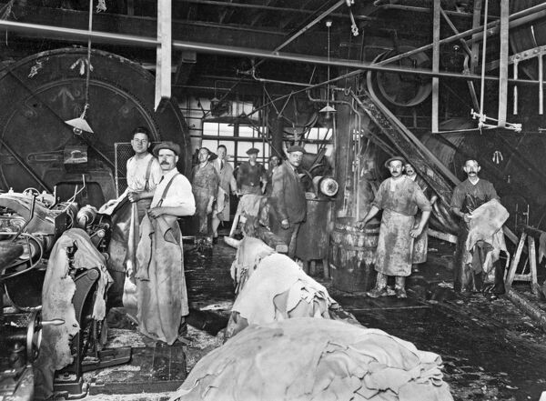 DICKENS BROTHERS, Northampton. Photograph of interior of leather works c.1929. Preparing leather for the shoe and boot industry