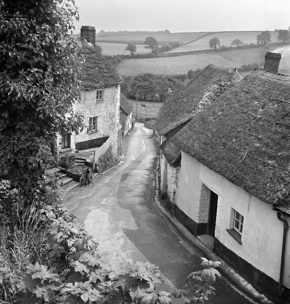 A view from an elevated position over an unidentified village lane, showing small whitewashed and thatched cottages either side of the road and a rural landscape of fields beyond. Probably located in Devon or Somerset. Photographed by John Gay