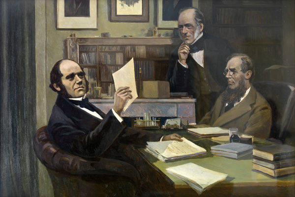 DOWN HOUSE, Kent. Charles Darwin, in his study, with Charles Lyell and Joseph Dalton Hooker, by Victor Evstafieff ( Eustaphieff, Evstafiev ). Inventory number 88202271. DP135279
