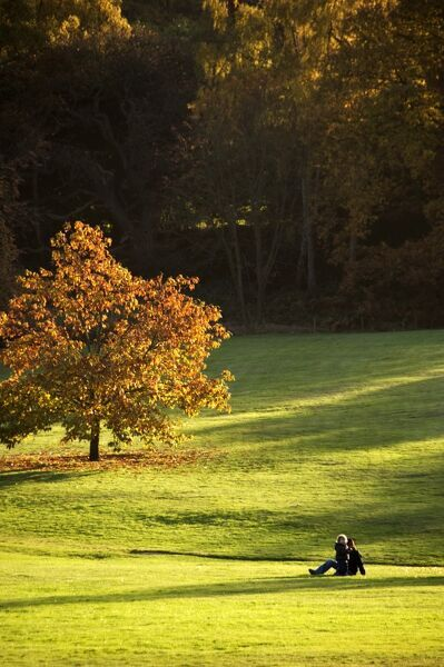 KENWOOD HOUSE, London. Autumnal view of the parkland with visitors