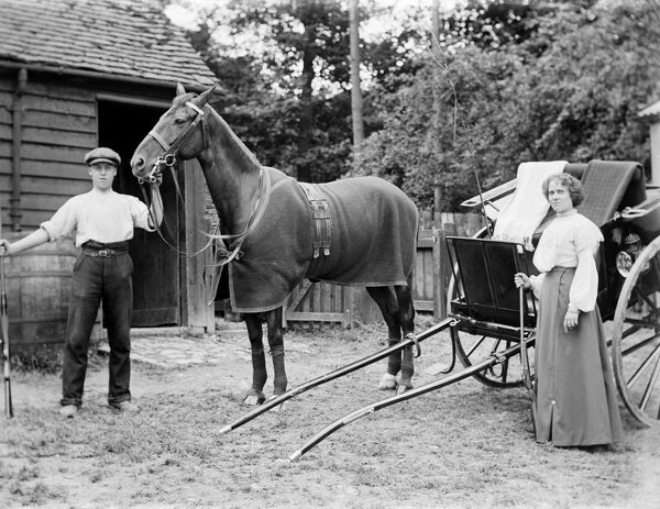Horse and Trap BB98_10628. © Historic England