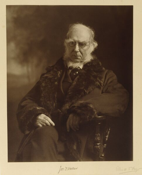 DOWN HOUSE, Kent. Photograph of Joseph Hooker by Elliott and Fry. Hooker was Director of Kew Gardens and a close friend and supporter of Charles Darwin