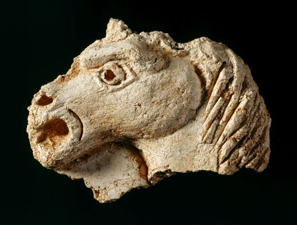 BERRY POMEROY CASTLE, Devon. Plaster fragment of a horse's head from one of the ceilings