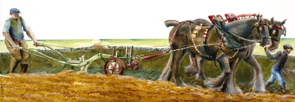 Reconstruction drawing of ploughing in Victorian times by Judith Dobie, English Heritage Graphics Team. Farming