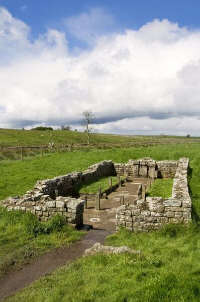 HADRIAN'S WALL: TEMPLE OF MITHRAS, Northumberland. View of the Temple near Carrawburgh. hadrian