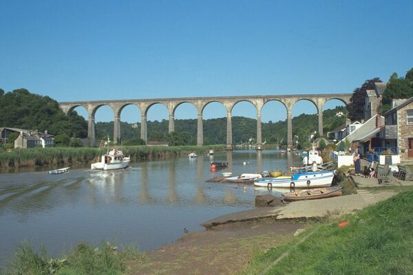 Viaduct. Railway Viaduct over the River Tamar. IoE 60814