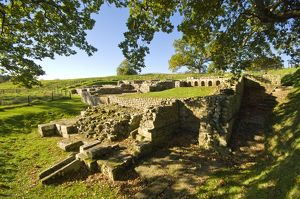 Chesters Roman Fort N100473