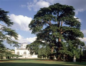 Chiswick House J970253