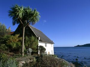 Cottage by Runswick Bay K011112