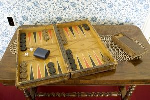 The Darwin's Backgammon board game N080515