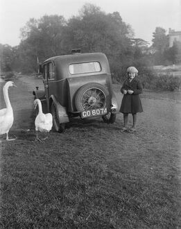 Girl, car and swans EGP_22663_009