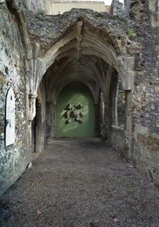Greyfriars' Cloisters, Great Yarmouth N100313