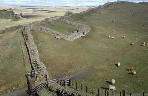 Hadrians Wall, Cawfields, Milecastle 42 K960046