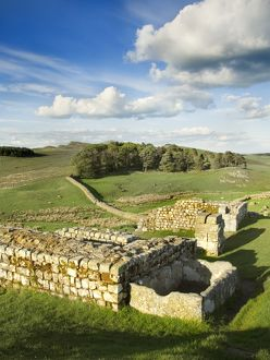 Hadrian's Wall: Housesteads Fort N071086