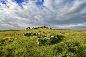 Hound Tor, Cist and Cairn Circle N090115