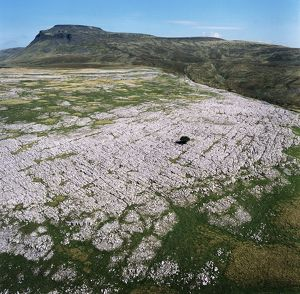 Ingleborough Common EAW603463