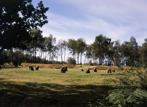 Nine Ladies Stone Circle K031047