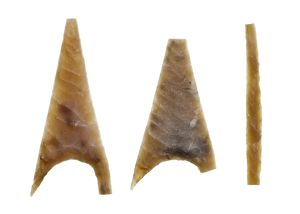 Neolithic arrowheads N100547