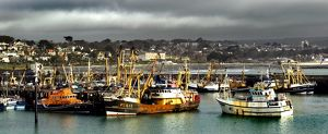 Newlyn Fishing Port N061030