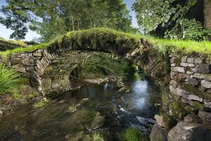Packhorse Bridge DP169852