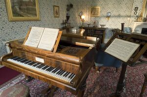 Piano in the Drawing Room at Down House N090132