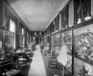 The Picture Gallery, Audley End House DD58_00106