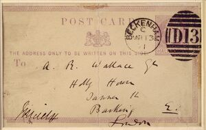 Postcard from Charles Darwin to A R Wallace K970337