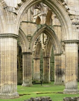 Rievaulx Abbey J060222