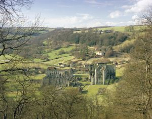 Rievaulx Abbey J870075