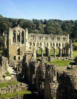 Rievaulx Abbey J880323