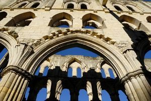 Rievaulx Abbey N071703