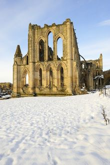 Rievaulx Abbey N100124